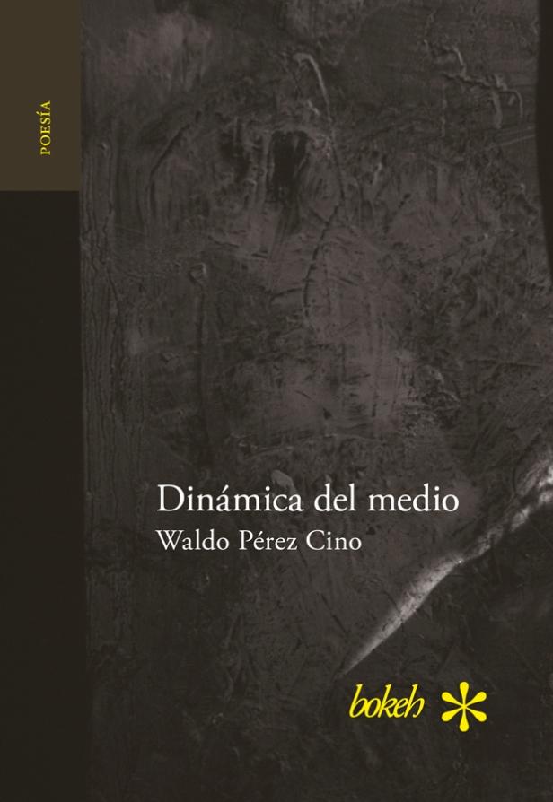 DinamicadelmedioWPC