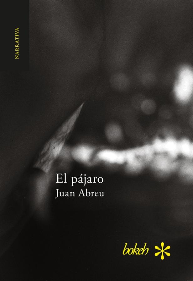 Elpajaro_JA